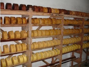 Fazenda Serra Boa Vista